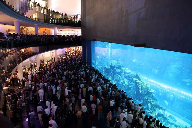 AQUARIUM RAKSASA, DUBAI MALL.jpg